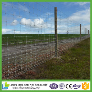 Knotted Iron Wire Mesh / Field Iron Fence / Deer Fence pictures & photos