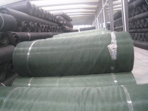 Plastic Net False Roof for Coal Mine pictures & photos