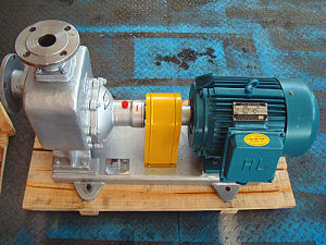 Cyz Marine Gasoline Oil Centrifugal Pump pictures & photos