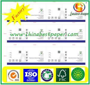Photocopy Paper Aplus Brand 80G/M2 (copy paper 70-80g) pictures & photos