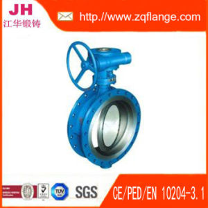 Butterfly Valve and Flanges pictures & photos