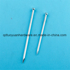 Manufacturer Galv Metal Iron Nail pictures & photos
