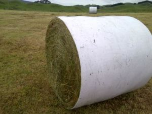 Wide Inner Barrier Wrap Film for Round Bales pictures & photos