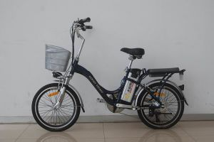 City Electric Bike TDC1101Z Dark Blue pictures & photos