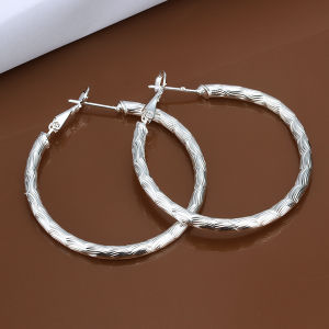 Popular Simple Round Earring Sterling Steel Silver Earring Generous Design for Women pictures & photos