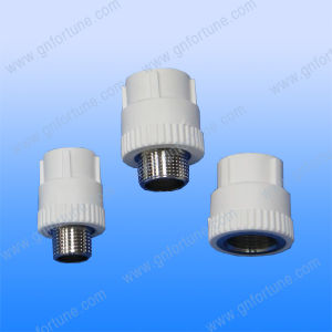 PPR Pipe Fitting Socket pictures & photos