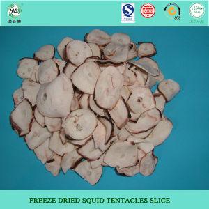 Freeze Dried Squid Slice