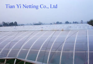 High Strength Anti Wind Net (AN120W) pictures & photos