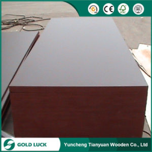 Second-Hand Construction Finger Joint Laminated Film Faced Plywood pictures & photos