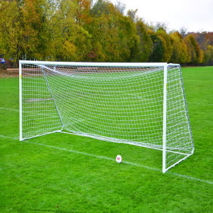 Portable Offical Soccer Goal (Item No FSS B30) pictures & photos
