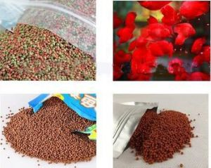 Large Capacity Automatic Floating Fish Feed Making Machine pictures & photos
