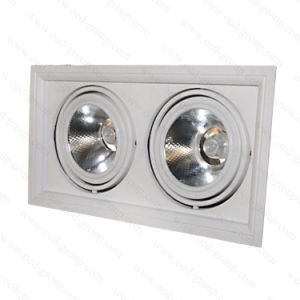 130lm/W Indoor Grille Lightings with Double Head 2*10W pictures & photos
