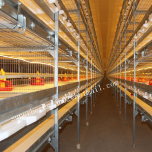 Automatic Poultry Broiler Cage for Chicken House pictures & photos