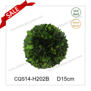 D15cm Party Supplies Fresh Leaves Boxwood Globe Wall Art