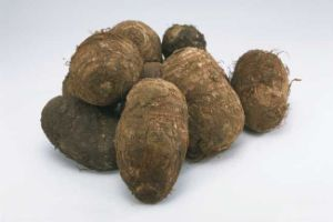 New Crop Fresh Good Quality Taro for Sale pictures & photos