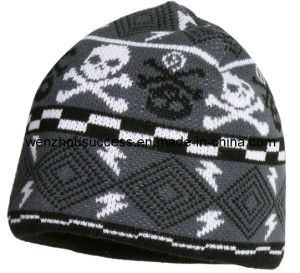 Knitted Beanie Hat (SS12-CK091) pictures & photos