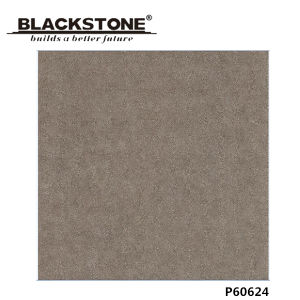 Decoration Material 600X600mm Rustic Porcelain Flooring Tile (P60621) pictures & photos