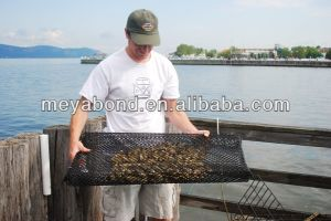 HDPE Oyster Mesh Bags, Oyster Growing Bags, Cages in Fish Farming pictures & photos