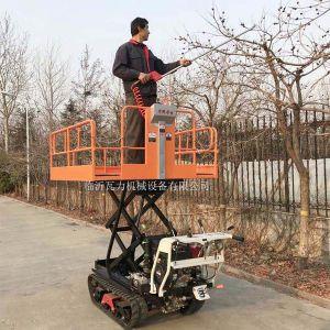Garden Type Self Propelled Garden Work Platform