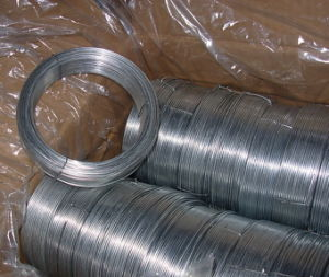 Electro Hot-Dipped Good Strength Galvnized Iron Wire pictures & photos