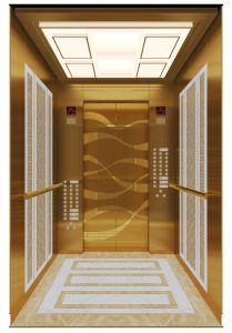 Good Quality Residental Elevator/Home Lift pictures & photos