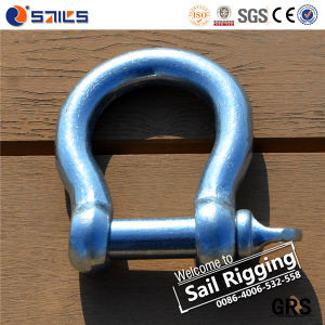 Galvanized European Large Bow Shackle pictures & photos