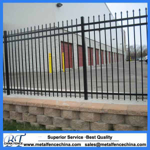 Ornamental Black Powder Coated Galvanized Steel Wrought Iron Fence pictures & photos