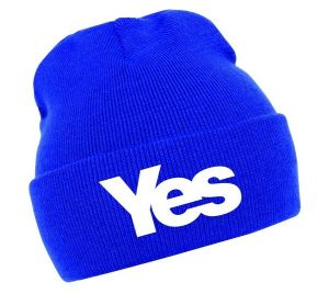Yes Beanie Hat Fitted (XT-B017) pictures & photos
