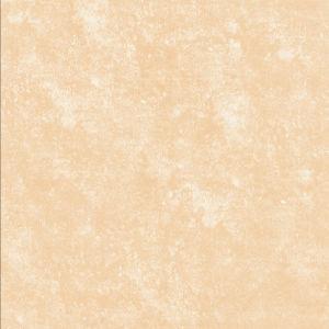 Indoor Rustic Tiles (F3621)
