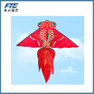 High New Design Quality Plaid Power Kite for Kids pictures & photos
