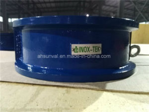 Dual Plate Wafer Check Valve, ANSI125# pictures & photos
