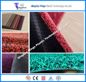 Anti Slip Durable PVC Coil Door Mat pictures & photos