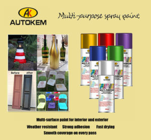 All Purpose Spray Paint, Touch-up Paint, Enamel Spray Paint, pictures & photos