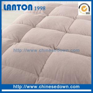 30%Goose Down Filled Cotton Quilt Bedding Set pictures & photos