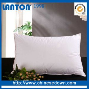 White Duck Goose Down Feather Cushion for Home pictures & photos