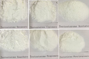 Top Pruity 99.5% Testosterone Propionate Steroid Powder pictures & photos