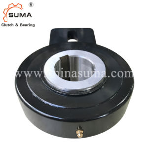 Hold Back One Way Bearing Rsbw60 Backlock Clutch for Bucket Elevator pictures & photos
