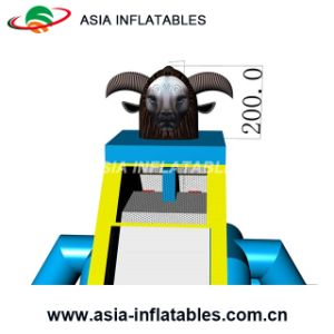 New Design Inflatable Biggest Inflatable Water Slide pictures & photos