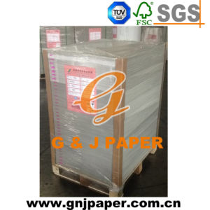 Great Quality Triplex White Back Paper for Packaging pictures & photos