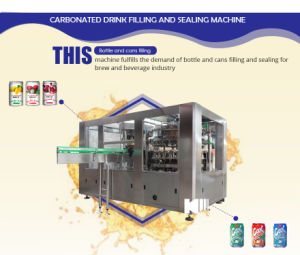 Automatic Bottled Carbonated Soft Drink Making Plant pictures & photos