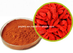 Hot Selling Goji Berry Extract 40%~60% Polysaccharides pictures & photos
