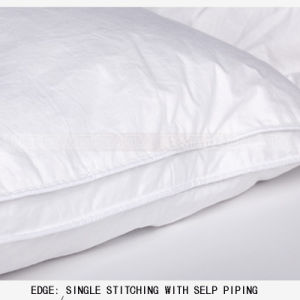 Wholesale Chinese Goose/Duck Feather Mattress Topper pictures & photos