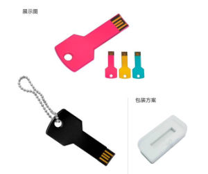 Hot Sell Metal Key USB Flash Drive Gadget Pendrive pictures & photos