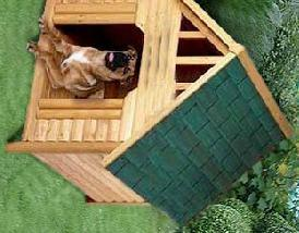Outdoor Backyard Wooden House for Dog pictures & photos