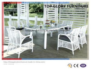 Outdoor Rattan Garden Dining Set (TG-1615) pictures & photos