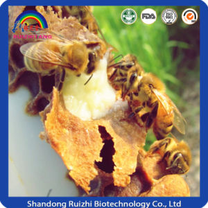 Bee Milk Royal Jelly Powder for Health Food pictures & photos