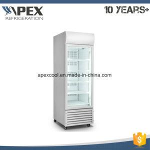 Single Temperature Ice Cream Refrigerator Freezer pictures & photos