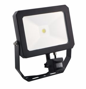 LED Black and White Flood Light COB IP 65 with Sensor 30W pictures & photos