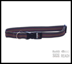 Reflective Safety Multi-Tone Extra Small Pet Dog Cat Collar pictures & photos