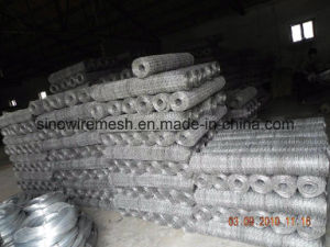 Chicken Wire Mesh Hexagonal Wire Netting pictures & photos